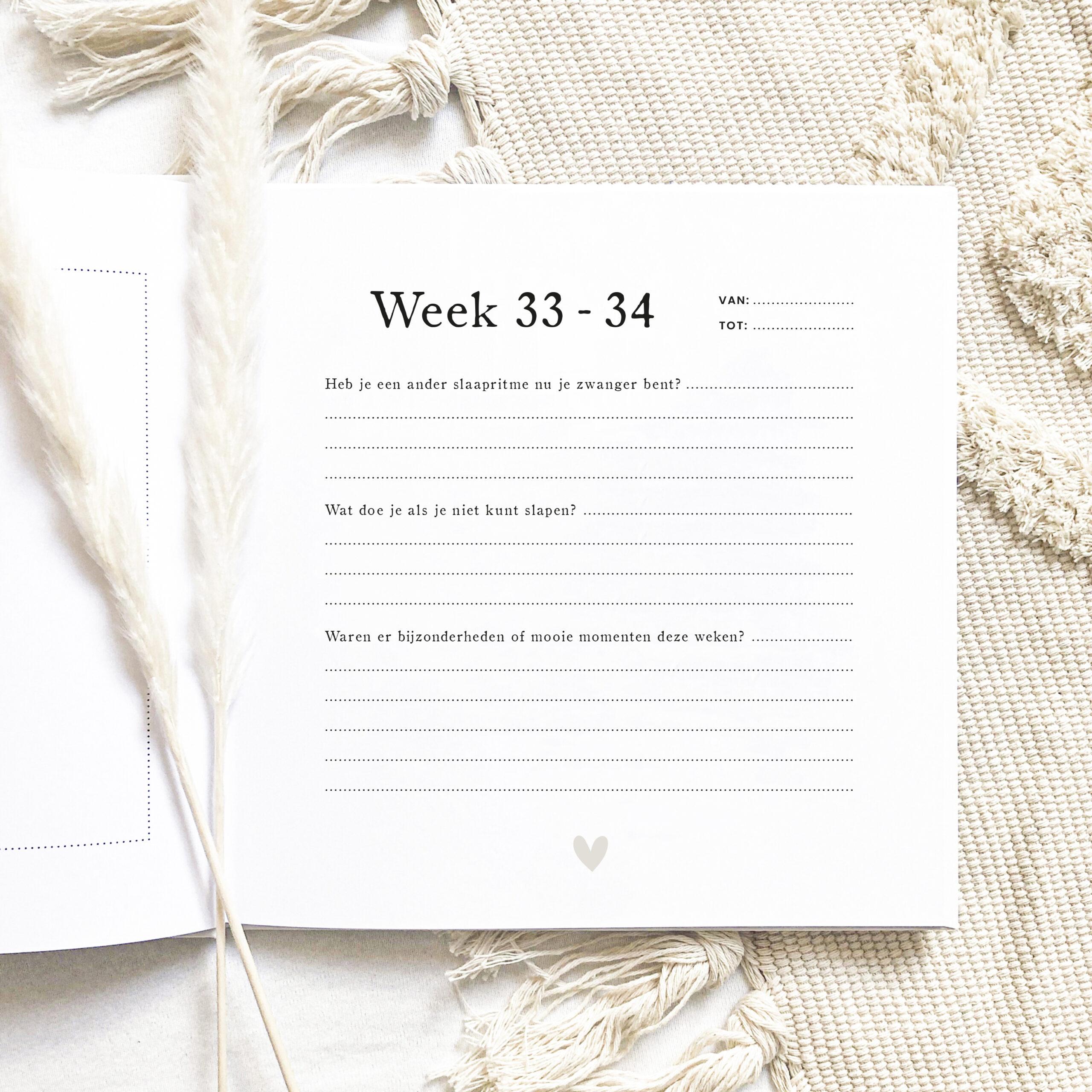 Mijn 9 Maanden_11